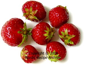 Cooking ingredients: Finnish berries (edible and poisonous)
