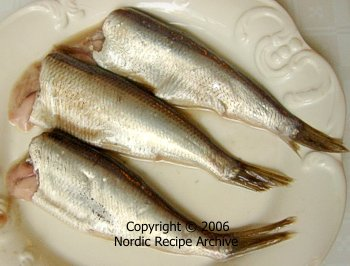 Surstr mming for Swedish fermented fish